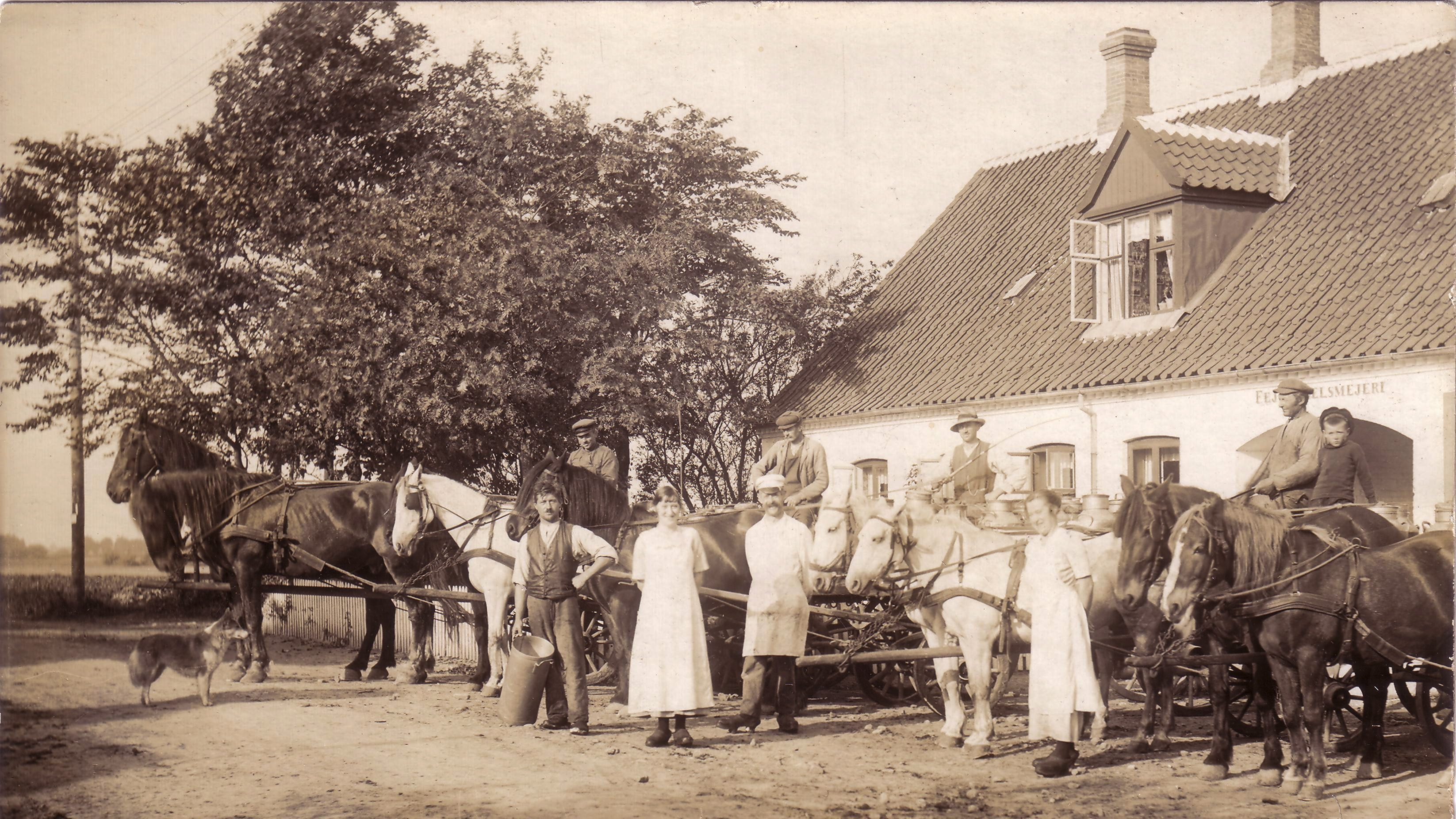 Fejø Andelsmejeri omkring 1910