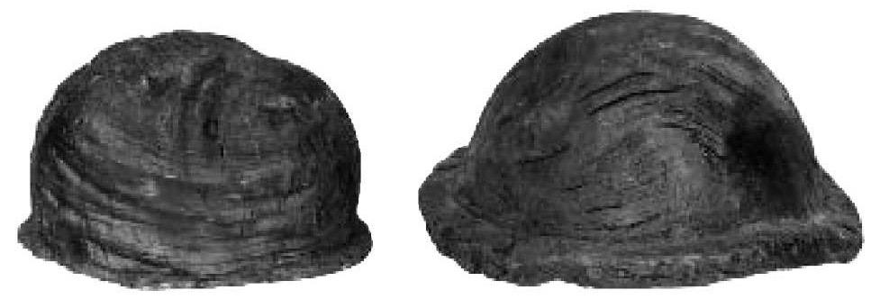 Træhjælmene fra Uglemose