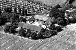 Dalmosegård