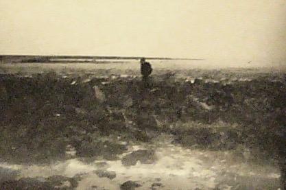 Bombehullerne ved Skalø